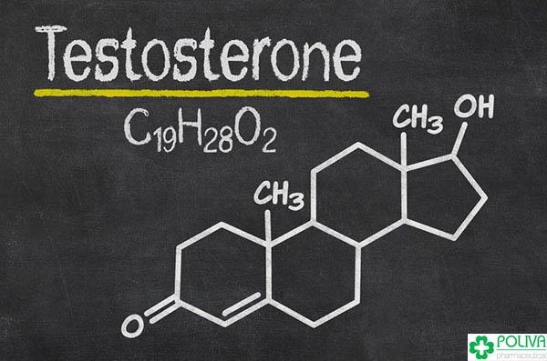 testosterone-la-gi-3