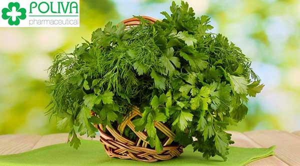 Thường xuyên ăn rau mùi sẽ làm suy giảm nội tiết nam – testosterone