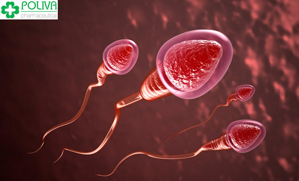 Khi quan hệ với bạn trai lỡ nuốt tinh trùng không thể có thai
