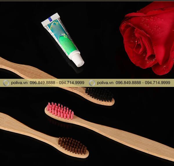 Poliva chuyên cung cấp các loại bàn chải đánh răng dùng 1 lần khách sạn
