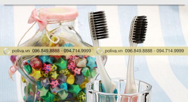 Poliva chuyên cung cấp bàn chải đánh răngchất lượng