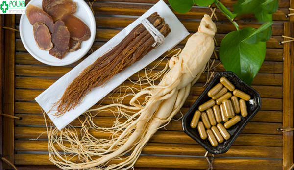 Nhân sâm - thuốc bổ ngàn xưa giúp tăng tinh trùng Y cho nam giới