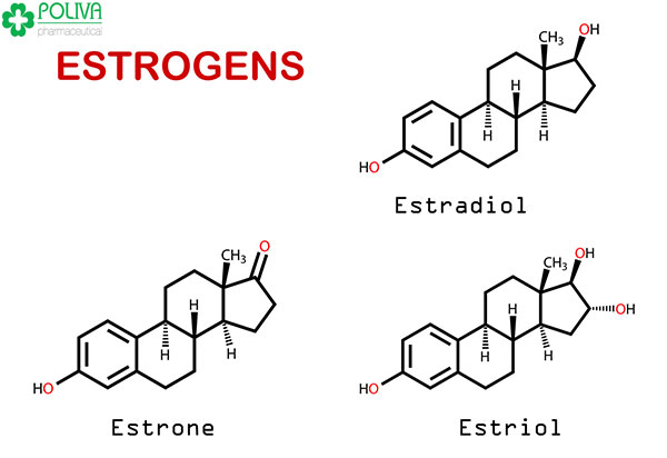Thừa hay thiếu Estrogen cũng đều không tốt.