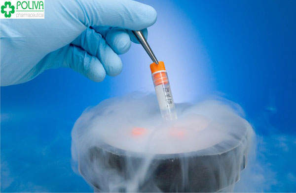 Tinh trùng trong điều kiện tự nhiên sẽ sớm chết nên cần tới các dụng cụ y tế để bảo quản chúng, phục vụ cho việc thụ tinh nhân tạo.