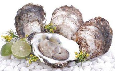 Ăn hàu biển có tác dụng gì? lý do đàn ông nên ăn hàu biển thường xuyên