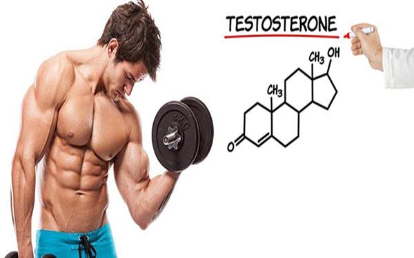Bí quyết tăng cường Testosterone – hoóc môn quyết định sinh lý nam