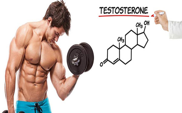 bi-quyet-tang-cuong-testosterone-1