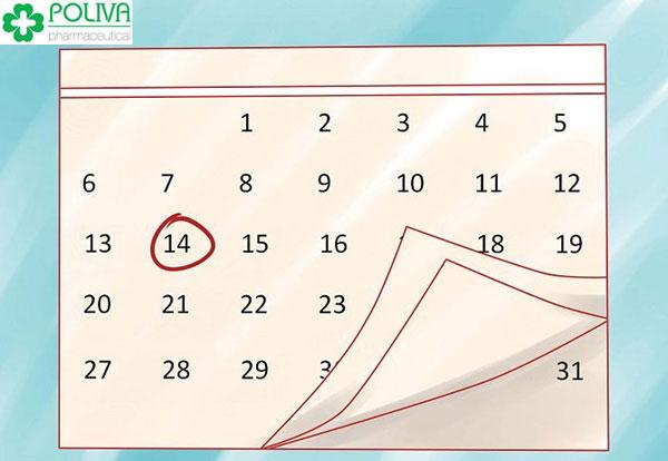 Chu kỳ kinh kéo dài 28 ngày thì sự rụng trứng có thể xảy ra vào ngày thứ 14