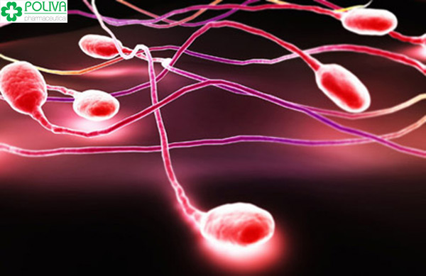 Tinh dịch chảy ra ngoài nhưng tinh trùng vẫn xâm nhập được vào âm đạo