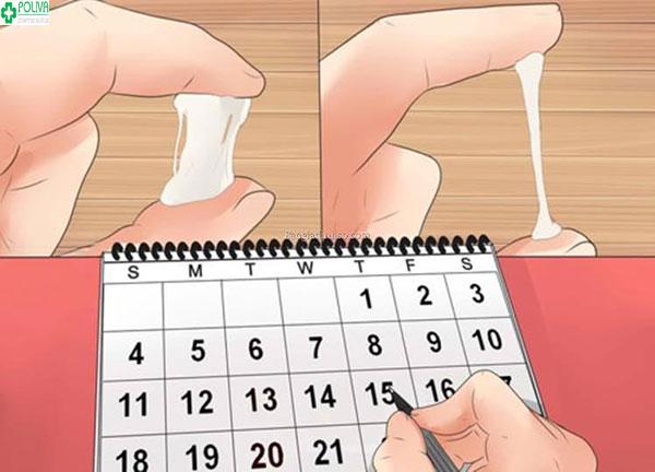 Chất nhầy tiết ra âm đạo giúp các chị em xác định ngày rụng trứng để sinh con trai theo ý muốn