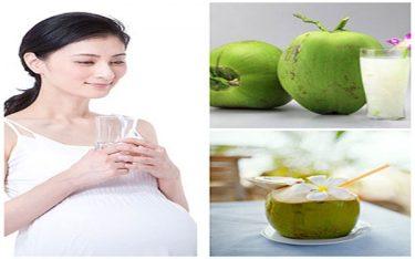 Giải đáp thắc mắc sau sinh có được uống nước dừa không?