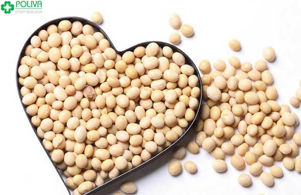 Trong đậu chứa nhiều chất xơ, vitamin và khoáng chất.