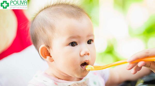 Thức ăn được xay nhuyễn và nấu chung với cháo.