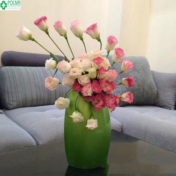 Hoa tươi - món đồ không thể thiếu cho ngôi nhà