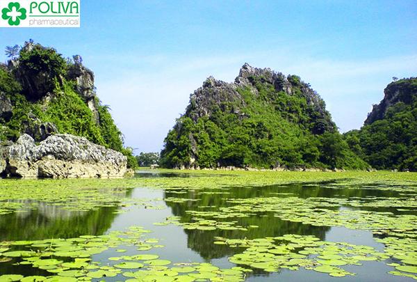 5 địa điểm du lịch gần Hà Nội