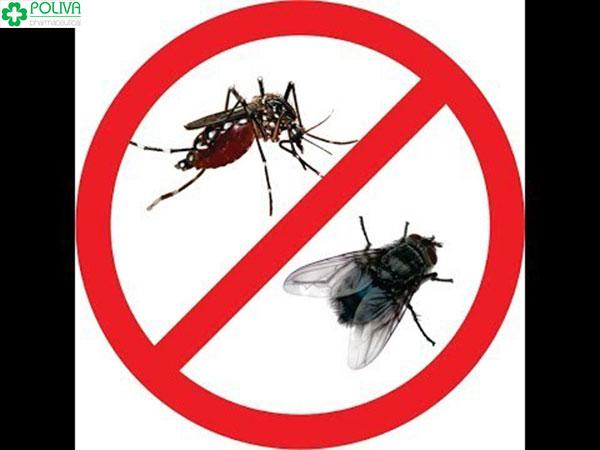 Muỗi không phải là vật trung gian truyền Virus HIV