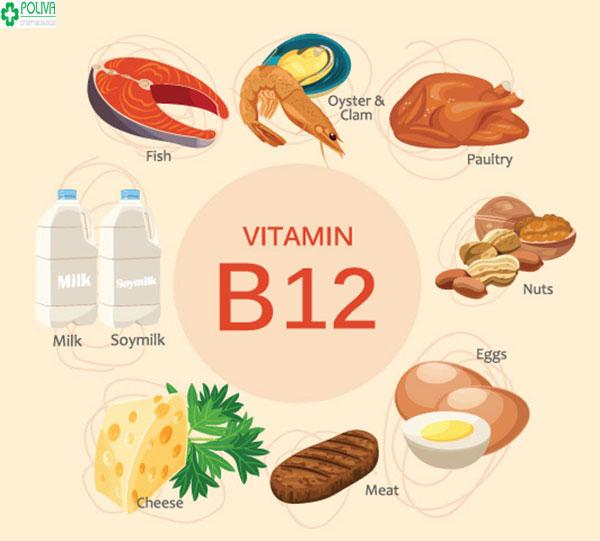 Vitamin B12 giúp hoàn thiện các tế bào, sợi mô và các cơ hoạt động được đảm bảo
