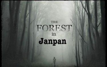 Khu rừng tự sát ở Nhật Bản – Bí mật nơi rừng thẳm không có lời giải