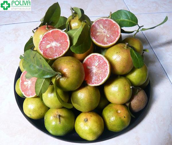 Bị ho nên ăn trái cây gì để nhanh chóng khỏi bệnh
