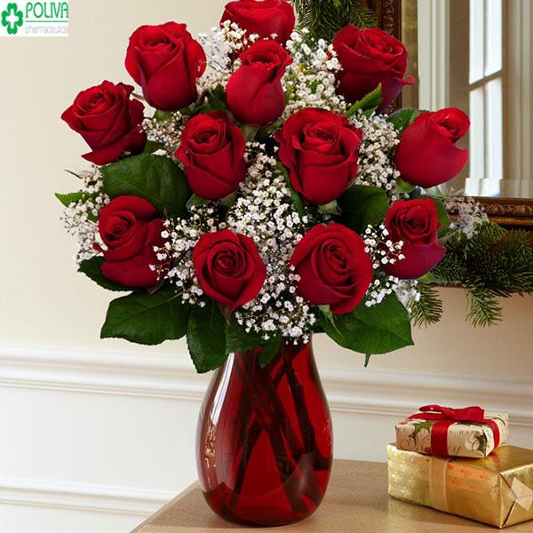 Cắm hoa hồng vào lọ cao đơn giản và sang trọng