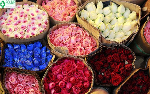 Nên chọn hoa hồng phù hợp với không gian trang trí
