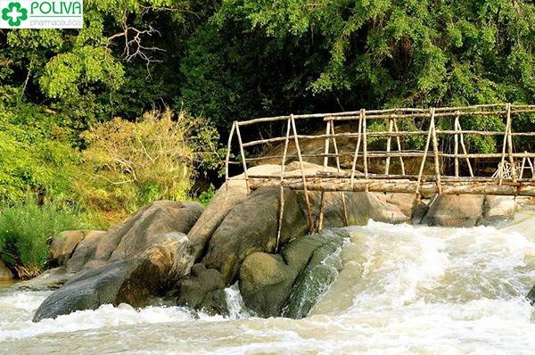 địa điểm du lịch ở đồng nai