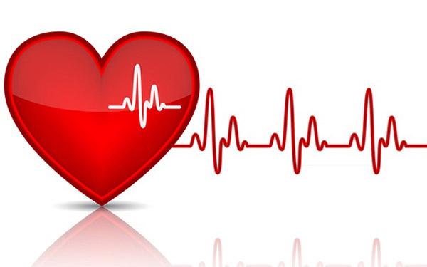 Nhịp tim bao nhiêu là tốt? Cách đo nhịp tim và huyết áp tại nhà