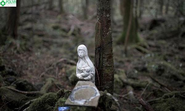 khu rừng tự sát ở Nhật Bản
