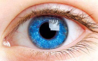 Tất cả các bệnh về mắt và triệu chứng – Xem ngay để biết