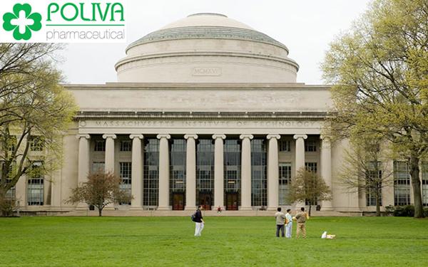 top 10 trường đại học hàng đầu thế giới