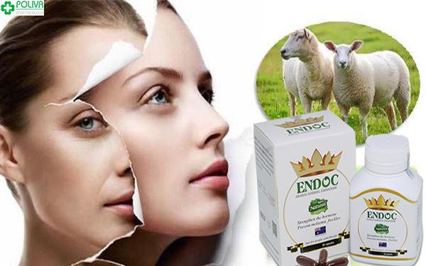 Viên uống nhau thai Cừu ENDOC