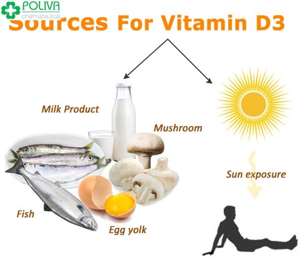 Vitamin D3 có tác dụng gì đối với cơ thể?