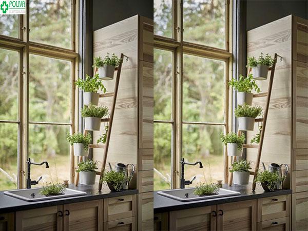 Độc đáo với kiểu thiết kế ruộng bậc thang trồng cây cho nhà bếp