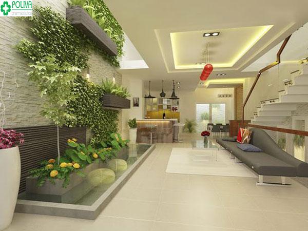 Tô điểm cho căn phòng khách bằng nhiều loại cây khác nhau tạo không gian thoáng mát cho ngôi nhà