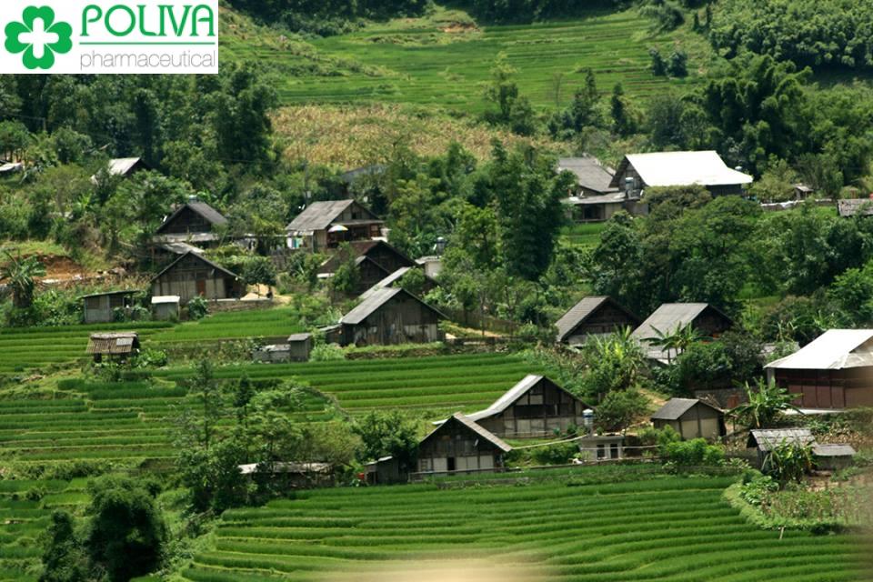 Bật mí cho bạn tất tần tật kinh nghiệm du lịch Thung Nai
