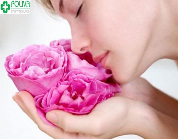 Một làn da sạch mụn nhờ hoa hồng, bạn có tin?