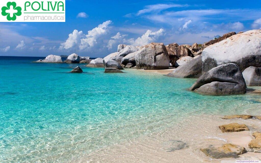 Khám phá Top 7 địa điểm du lịch Bình Định - Thiên Đường Biển Đảo