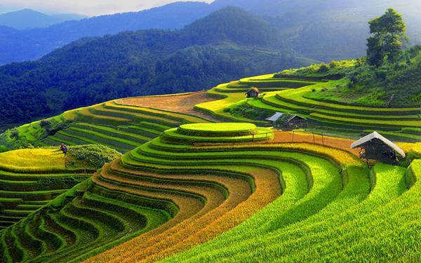 Tổng hợp các kinh nghiệm du lịch Yên Bái tự túc mới nhất