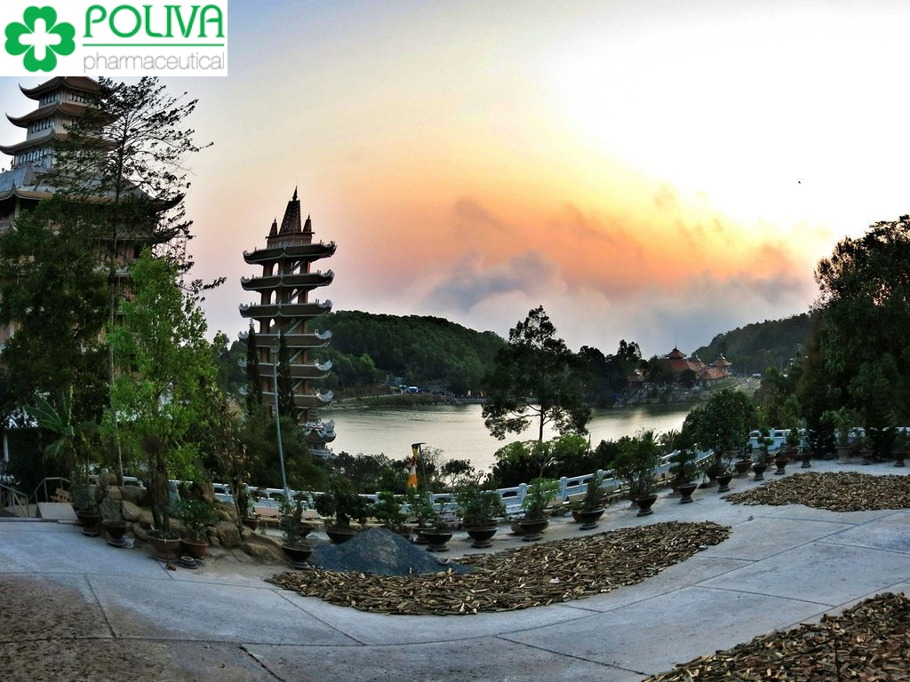 Phượt Hà Giang - Khám phá vùng đất hoa tam giác mạch tươi đẹp