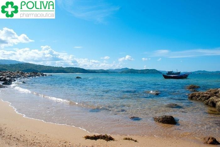 Tổng hợp kinh nghiệm du lịch Phú Yên - Phượt Phú Yên
