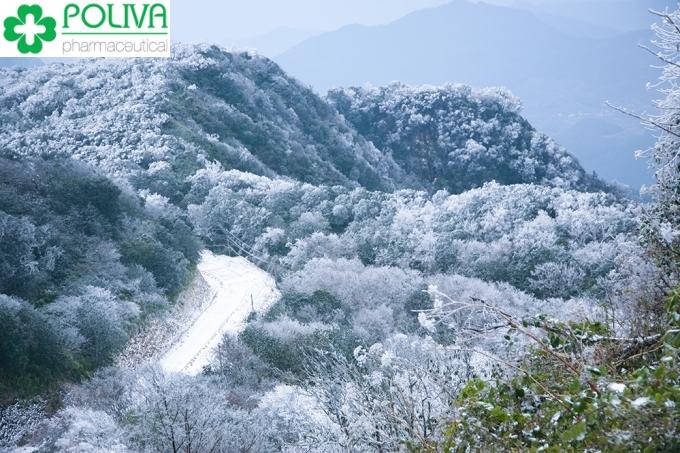 Khám phá vẻ đẹp của khu du lịch Cao Bằng - Phượt Cao Bằng