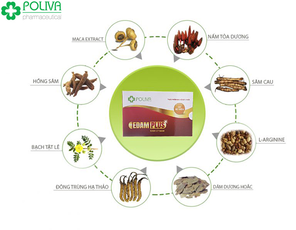 Nên sử dụng thêm viên uống sinh lý nam Poliva Edam chiết xuất 100% thảo dược thiên nhiên