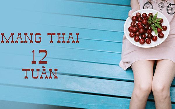Thai 12 tuần tuổi: Độ mờ da gáy bao nhiêu? Mối quan tâm nhất của mẹ!
