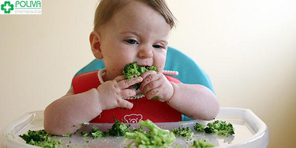 Tập cho trẻ thói quen ăn dặm sớm và cai sữa