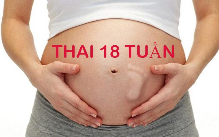 Thai 18 tuần là mấy tháng, mẹ tăng bao nhiêu kg là hợp lý?