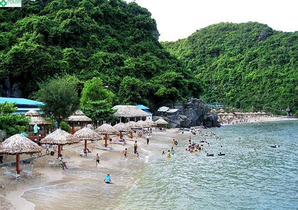 Bãi tắm Đảo Khỉ