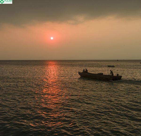 Đánh bắt cá đêm ở đảo Cô Tô