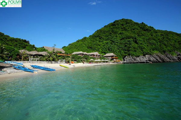Làn nước trong xanh cùng bãi cát trắng xinh đẹp trên đảo Khỉ
