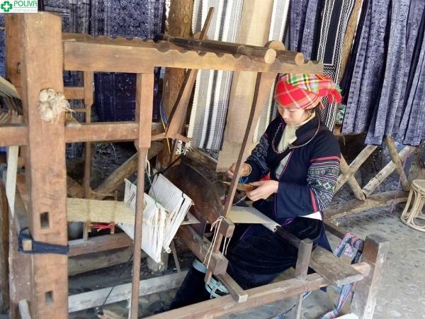 Đôi tay dệt vài khéo léo của cô gái H'Mông