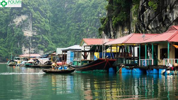 Cùng đến làng chài Cửa Vạn và trải nghiệm thử làm ngư dân